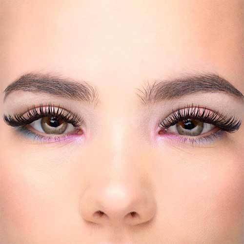Brow and Lash Tech Course